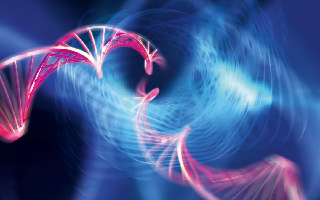 Какова ДНК вашего бизнеса?